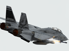 F-14  RS